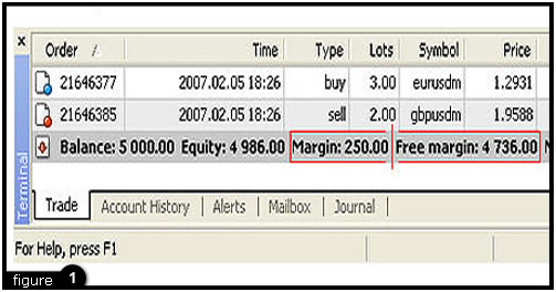What is free margin in forex euro story
